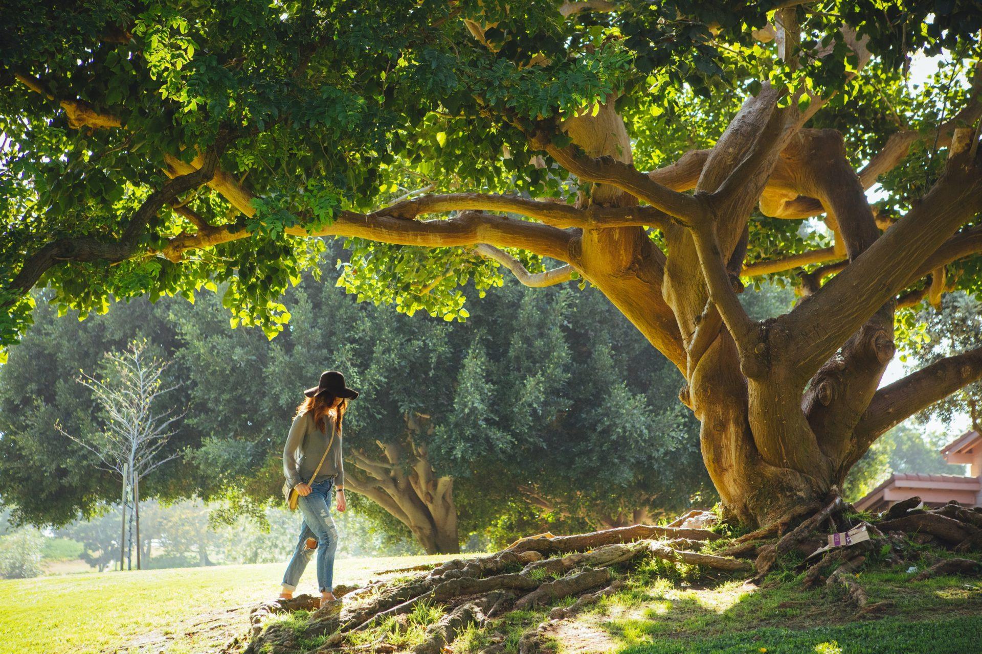 Naturopathie-Sante.org